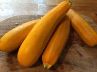 Dovlecei galbeni din grădină