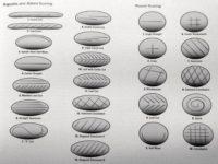 Modele de scoring pentru pâine