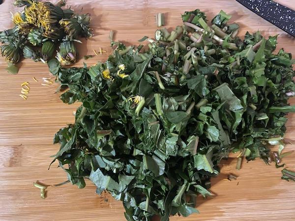 Frunze și tulpini de păpădie