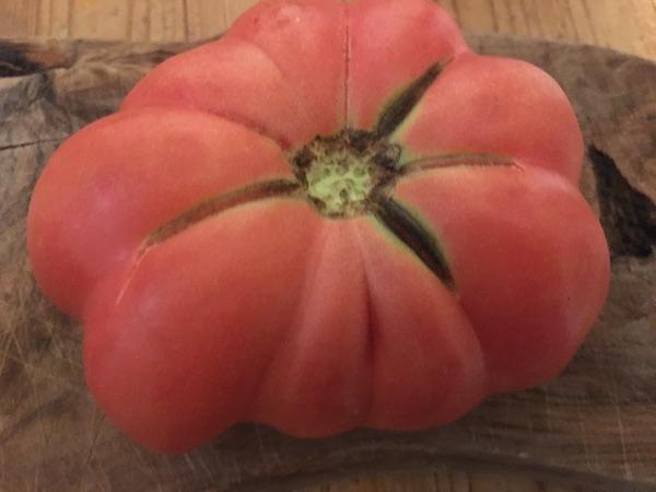 Tomată Montserrat