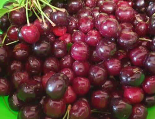 Prăjitură cu fructe – Clafoutis cu cireșe sau vișine